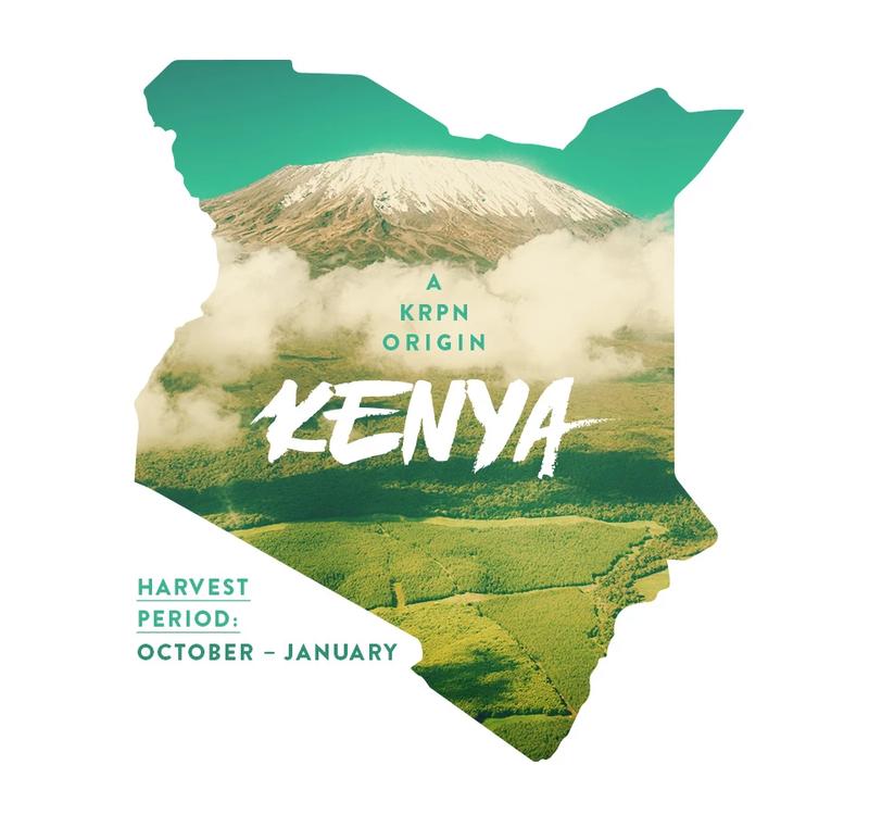 Kafferäven Kenya Landskaffe