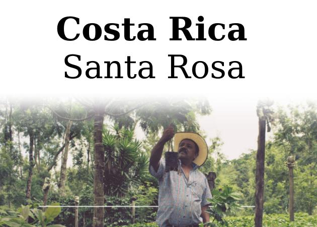 Råkaffe Costa Rica Santa Rosa